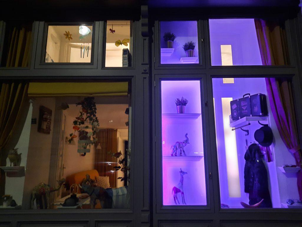 Beleuchtete Auslage für Präsentationszwecke im Mauthaus-Schönbrunn-Pop-Up-Shop